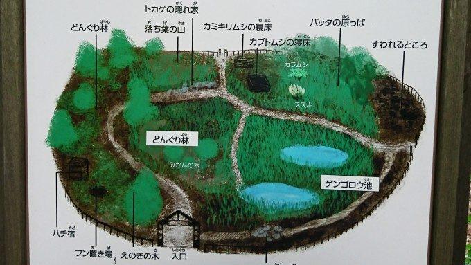 いきもの広場 (2)