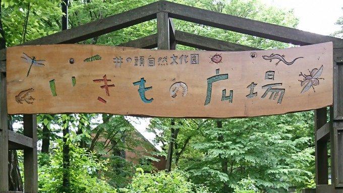 いきもの広場 (1)