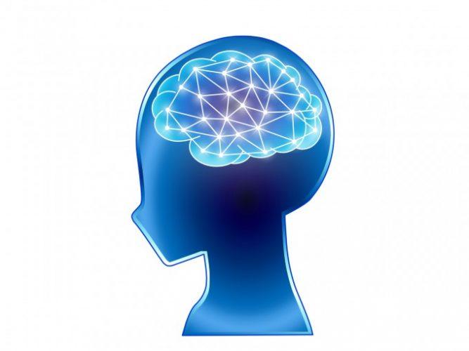 育脳(1)
