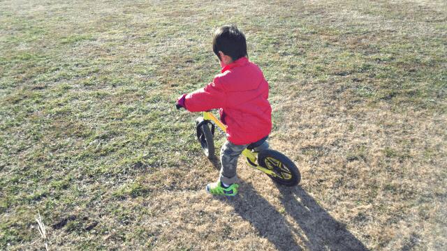 3歳遊び(3)