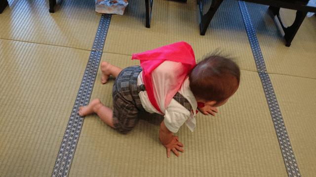 1歳誕生日何する(2)